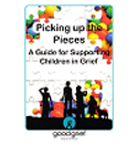 Picking up the Pieces Handbook